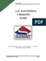 Planilla Electronica, T- Registro y Plame