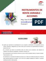 Instrumentos Renta Variable Acciones