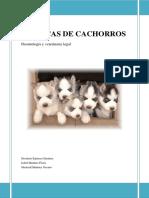 fabcac.pdf