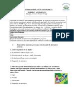 Guía de apoyo   Fuerza y movimiento Ciencias 4° basicos