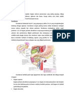 Anatomi usus halus