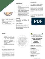 El Círculo Concentrico