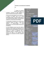 Rutas Metabolicas Que Originan a Los Metabolitos Secundarios
