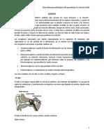 SENTIDOS.doc