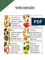 nutrientes-esenciales