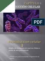 CAPÍTULO 8 - Reproducción Celular (2016)