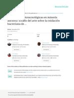 AplicacionesBiotecnologicasEnMineriaAurifera