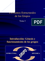 Génesis y Funcionamiento de Los Grupos