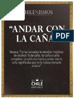 chilenismos2016.docx