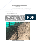 Planeación Del Programa de Monitoreo de Estabilidad de Taludes Mina Caypa_semestre02_2017_anexo 02