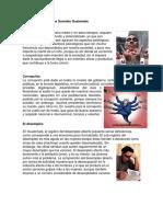 Principales Problemas Sociales Guatemala