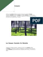 Definicion de Bosques
