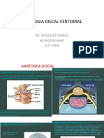 Patologia Discal Vertebral