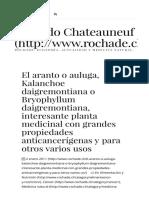 Kalancho1eArantoAnticancerígenas RicardChateauneuf