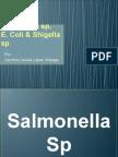 Salmonella, E.coli, Shigella.pptx