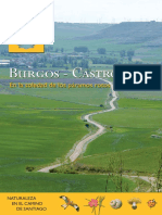 4 Burgos