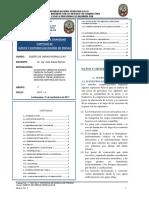 RESUMEN-EJECUTIVO-TRABAJO-DE-INVESTIGACION 1-GRUPO-7_ESPAÑOL.pdf