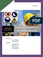 TP Integrador Higiene y Seguridad Laboral (1)