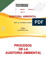 Ayuda 3 - Proceso y Planificacion de La Auditoria Ambiental