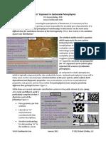 _m_Exponent.pdf