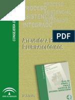 Proceso Asistencial Integrado Atencion a Pacientes Pluripatologicos