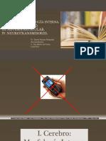 Clase 2. Cerebro Morfología Interna. S. límbico. S. reticular. Nt..pdf