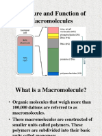 Structure and Function of Macromolecules.ppt