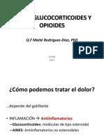 Tratamiento Del Dolor y La Inflamacion, Aines, Gluco y Opioides_2011