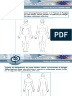protocolo_autopsia