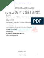 Modelo de Informe Pericial Caligrafico[1]