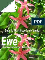 Fotos Das Folhas Usadas No Candomblé (Ewé), A Partir Da Coletânea de Verger (4)