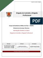 Instrução Técnica nº 17 CBMPA