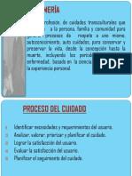 285447216-Proceso-de-Atencion-de-Enfermeria.ppt