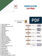 Las Fijas Ginecologia