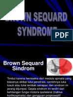 5. brown sequard sindr.ppt