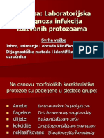 VEZBA 2 Laboratorijska Dg Infekcija Izazvanih Protozoama