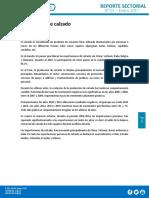 Reporte-Sectorial-de-Calzado-Enero-2017.pdf