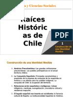 0008 PSU Aborigenes Chilenos