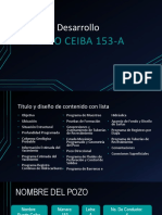 Pozo Puerto Ceiba 153-A