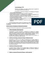 2 - Anexo N° 1 Programa Prevención Estándar E-024
