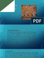 Corrosión de Los Materiales