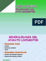 2-Generalidades de Locomotor