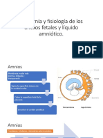 Anatomía y Fisiología de Los Anexos Fetales y
