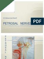 Petrosal Nerves