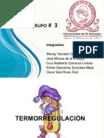 Grupo # 3 Termorregulacion 23-10-17