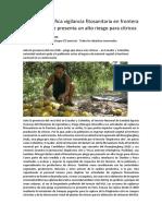 Senasa Intensifica Vigilancia Fitosanitaria en Frontera Por Plaga Que Presenta Un Alto Riesgo Para Cítricos