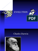 Darwin Evolution Ppt