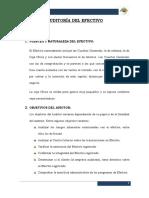 AUDITORIA_DEL_EFECTIVO_EFECTIVO.docx