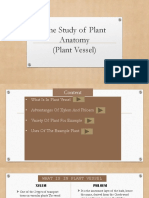 The Study of Plant Anatomy SEMTYPE