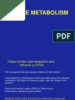 Folate Metabolism